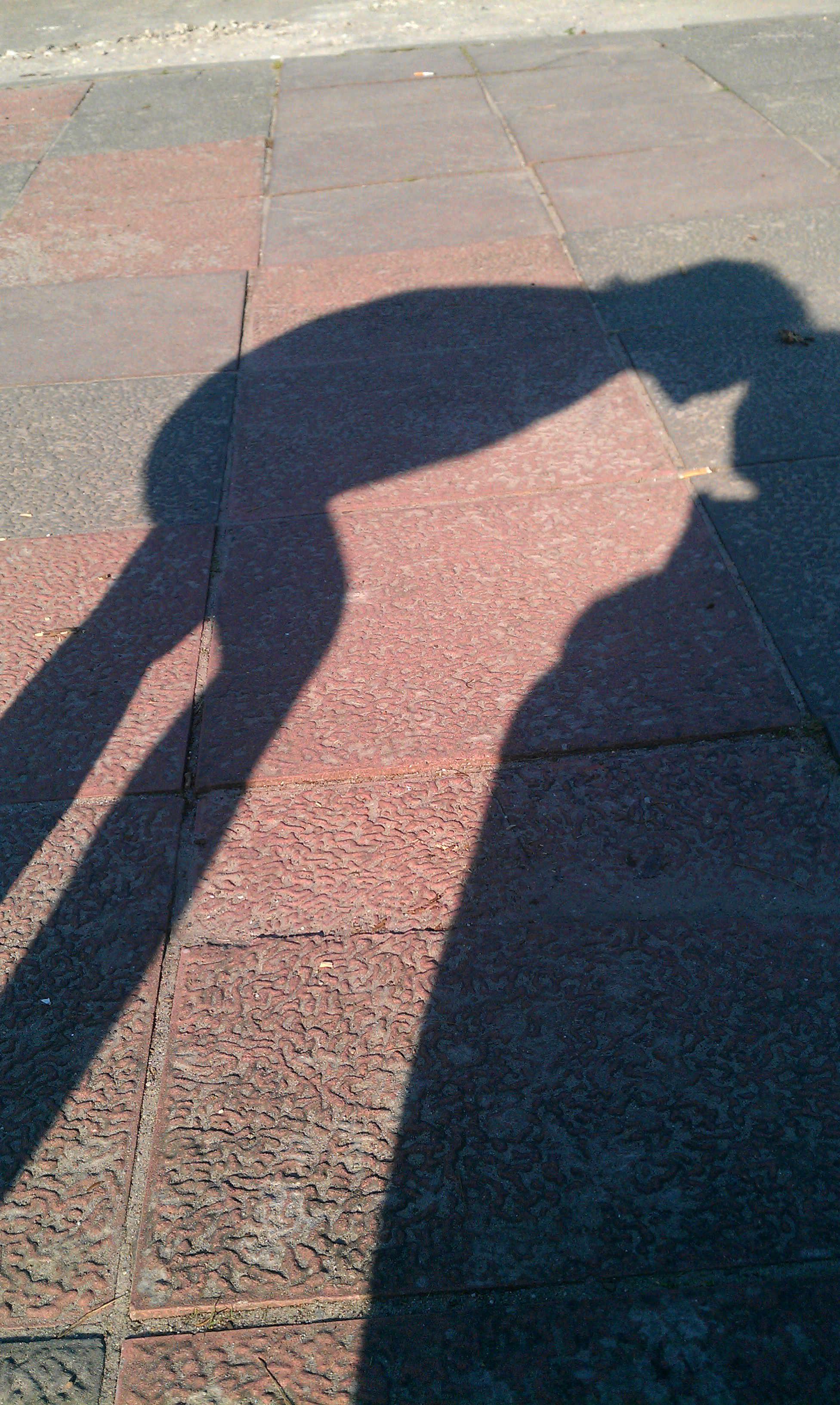 Schattenknutscher