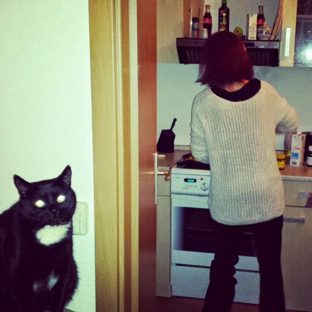 Beste Mitbewohnerin macht essen für Kranken Mitbewohner. Katze ist auch da.